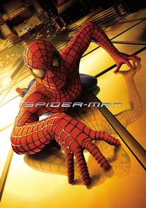 Homem-Aranha - Poster / Capa / Cartaz - Oficial 6