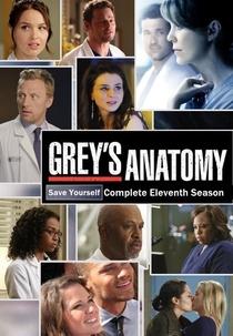 A Anatomia de Grey (11ª Temporada) - Poster / Capa / Cartaz - Oficial 3