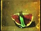 Danse du papillon (Danse du papillon)