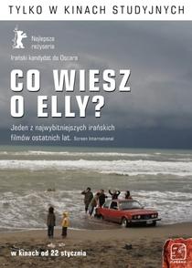 À Procura de Elly - Poster / Capa / Cartaz - Oficial 3