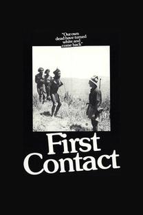 Primeiro Contato - Poster / Capa / Cartaz - Oficial 2