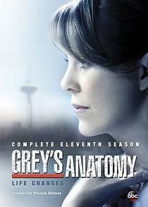 A Anatomia de Grey (11ª Temporada) - Poster / Capa / Cartaz - Oficial 2