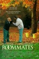 Dupla Sem Par (Roommates)