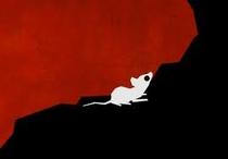 A Mouse's Tale - Poster / Capa / Cartaz - Oficial 1