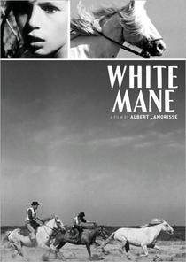O Cavalo Branco - Poster / Capa / Cartaz - Oficial 1