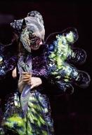 Björk – Vulnicura Live (Björk – Vulnicura Live)