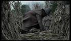 A Bruxa - Trailer Oficial