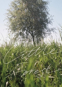 Little Forest - Poster / Capa / Cartaz - Oficial 8