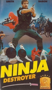 Ninja Destroyer - Poster / Capa / Cartaz - Oficial 1