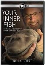 Quando eramos peixes - Poster / Capa / Cartaz - Oficial 1