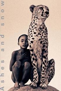 Cinzas e Neve - Poster / Capa / Cartaz - Oficial 1