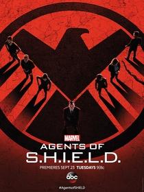 Agentes da S.H.I.E.L.D. (2ª Temporada) - Poster / Capa / Cartaz - Oficial 2
