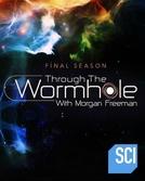 Grandes Mistérios do Universo (8ª Temporada) (Through the Wormhole (Season 8))