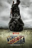 Virunga (Virunga)