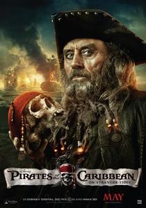 Piratas do Caribe: Navegando em Águas Misteriosas - Poster / Capa / Cartaz - Oficial 10