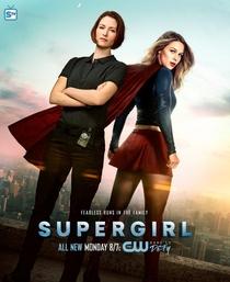 Supergirl (2ª Temporada) - Poster / Capa / Cartaz - Oficial 6