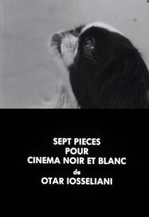 Sete fragmentos para um filme em preto e branco - Poster / Capa / Cartaz - Oficial 1