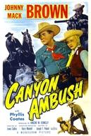 Pistoleiros Vingadores (Canyon Ambush)