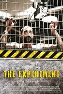 Detenção (The Experiment)
