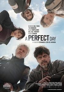 Um Dia Perfeito - Poster / Capa / Cartaz - Oficial 1