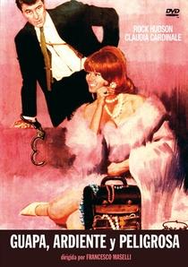 A Gatinha que eu Quero - Poster / Capa / Cartaz - Oficial 3