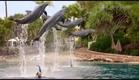 Mako Mermaids - Season 2 Trailer (2014)