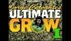 Guia Final do Cultivo de Maconha (Jorge Cervantes) DVD 01 LEGENDADO