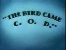 The Bird Came C.O.D. (The Bird Came C.O.D.)