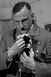 A Kitten for Hitler - Poster / Capa / Cartaz - Oficial 1