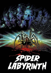 The Spider Labyrinth - Poster / Capa / Cartaz - Oficial 1