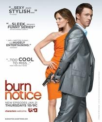 Burn Notice (2ª Temporada) - Poster / Capa / Cartaz - Oficial 1