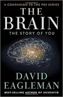 O Cérebro (Com David Eagleman) (The Brain (with David Eagleman))