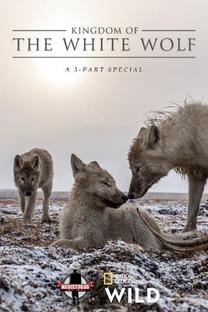Kingdom of the White Wolf (1ª Temporada) - Poster / Capa / Cartaz - Oficial 2