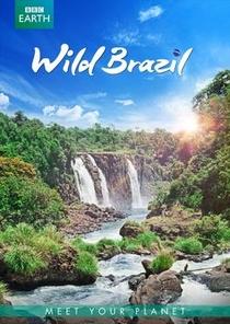 Brasil Selvagem - Poster / Capa / Cartaz - Oficial 4