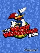 O Novo Show do Pica-Pau (1ª Temporada) (The New Woody Woodpecker Show (Season 1))