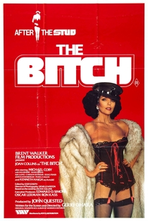 The Bitch - Poster / Capa / Cartaz - Oficial 1