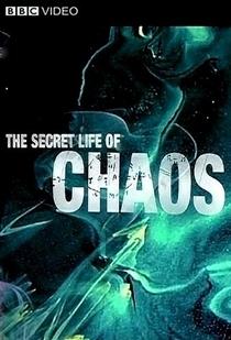 A Vida Secreta do Caos - Poster / Capa / Cartaz - Oficial 2