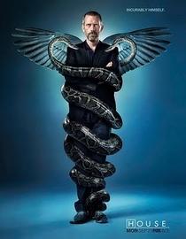 Dr. House (6ª Temporada) - Poster / Capa / Cartaz - Oficial 2