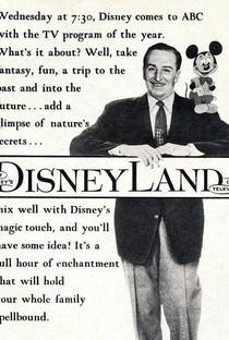 Abertura Disneylândia (31ª Temporada) - Poster / Capa / Cartaz - Oficial 1