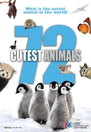 72 Animais Fofos