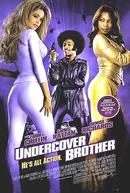 Com a Cor e a Coragem (Undercover Brother)