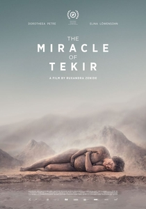 O Milagre de Tekir - Poster / Capa / Cartaz - Oficial 1