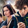 Animais Fantásticos 2 | J.K Rowling revela que terminou roteiro