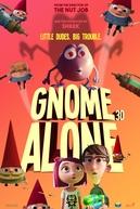 Duda e os Gnomos (Gnome Alone)