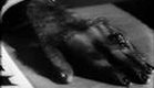 Boris Karloff - Dr. Jekyll and Mr. Hyde transformation