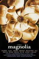Magnólia (Magnolia)