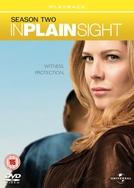 Testemunha Ocular (2ª Temporada) (In Plain Sight)