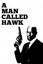 Um Homem Chamado Falcão (1ª Temporada) - Poster / Capa / Cartaz - Oficial 1