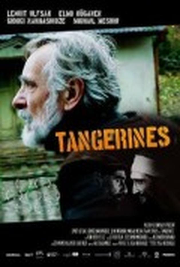 Review | Mandariinid(2013) Tangerines