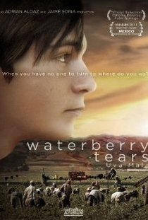 Waterberry Tears - Poster / Capa / Cartaz - Oficial 1